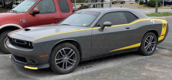 2008 Dodge Challenger Reverse C Side Pinstripes