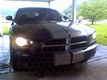 2006 Dodge Charger Rally Racing Dual Stripes Kit