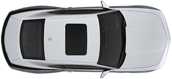 Rear Fender & Trunk Top Accent Stripes on the 2010 to 2013 Chevy Camaro